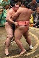鶴竜(左)が寄り切りで千代大龍を降す=東京・両国国技館で2018年9月13日、丸山博撮影