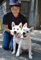 和歌山公園動物園に仲間入りした2頭の紀州犬=後藤奈緒撮影