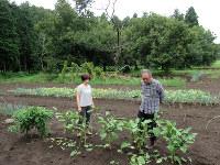 「別宅」の菜園で、野菜の育ち具合を確かめる三宅正高さん、真純さん夫妻=水戸市で