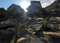 地震による土砂崩れで住民34人中19人が犠牲となった厚真町吉野地区。土砂の合間から植物の芽が顔を出していた=北海道厚真町で2018年9月23日午後3時25分、貝塚太一撮影