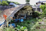 八尾市垣内に残る掩体壕=2018年8月14日、梅田麻衣子撮影