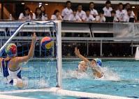 東京五輪のテストイベントを兼ねた水球の日本選手権でプレーする選手たち=東京辰巳国際水泳場で2018年10月5日、宮間俊樹撮影