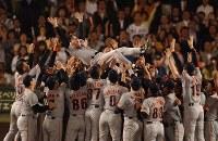 30回目のリーグ優勝を飾り原監督を胴上げする巨人の選手たち=2002年9月24日、望月亮一撮影