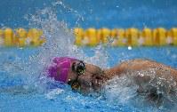 【アジアパラ大会・競泳】男子50メートル自由形(運動機能障害)で優勝した鈴木孝幸=インドネシア・ジャカルタで2018年10月11日、久保玲撮影