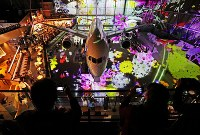中部空港に開業した複合商業施設「フライト・オブ・ドリームズ」=愛知県常滑市で2018年10月12日午前10時17分、兵藤公治撮影