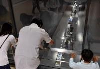 豊洲市場の見学者コースから見下ろせる水産仲卸売場=東京都江東区で2018年10月13日午前10時25分、竹内紀臣撮影