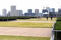 一般公開が始まった豊洲市場の水産仲卸売場棟屋上にある緑化広場=東京都江東区で2018年10月13日午後0時25分、竹内紀臣撮影