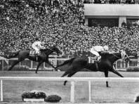 【1976年】グリーングラス テンポイントに2馬身差をつけて初G1制覇。1番人気のトウショウボーイは3着=京都競馬場で1976年11月14日撮影