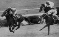 【1984年】シンボリルドルフ 直線で逃げるニシノライデンをかわし、史上初めて無敗で3冠を達成したシンボリルドルフ(左)=京都競馬場で1984年11月11日撮影