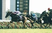 【1999年】ナリタトップロード 皐月賞3着、日本ダービー2着の雪辱を晴らしたナリタトップロード(左)=京都競馬場で1999年11月7日撮影