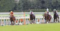 【2011年】オルフェーヴル 最後の直線で一気に抜け出しクラシック3冠を達成したオルフェーヴル(左端)=京都競馬場で2011年10月23日、長谷川直亮撮影