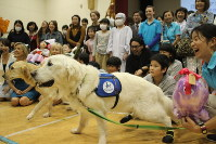 Facility dog Bailey takes a commemorative photo along with his successor Annie, left, with children and parents who participated in his retirement ceremony at Kanagawa Children's Medical Center in Yokohama's Minami Ward, on Oct. 16, 2018. (Mainichi/Haruka Udagawa)