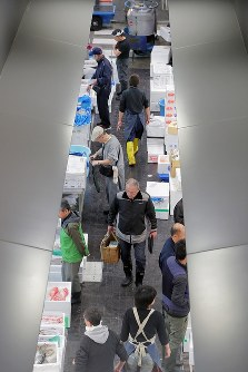 開場から1週間がたった豊洲市場の水産仲卸売場=東京都江東区で2018年10月18日午前6時42分、和田大典撮影
