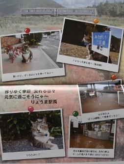 「りょうまを見守る会」が作成した来年のカレンダーには、りょうまの写真とともにJR志和口駅の浸水被害の写真が掲載されている=京都市内で2018年10月16日、菅沼舞撮影
