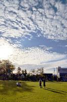 日に日に秋めいていく空=金沢市玉川町の公園で、中本泰代撮影