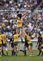 【ニュージーランド―オーストラリア】後半、ラインアウトからボールを奪い合う両チームの選手たち=横浜・日産スタジアムで2018年10月27日、藤井達也撮影
