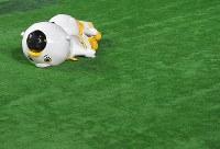 グラウンドに倒れるソフトバンクのマスコットのふうさんとこふうさん=ヤフオクドームで2018年10月30日、徳野仁子撮影