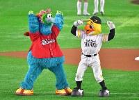 試合前に踊るソフトバンクのマスコットのハリーホーク(右)と広島のマスコットのスライリー=ヤフオクドームで2018年10月30日、徳野仁子撮影