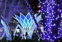 華やかなイルミネーションに照らされるJR博多駅前=福岡市博多区で2018年11月8日、徳野仁子撮影