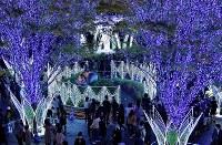 華やかなイルミネーションに照らされるJR博多駅前=福岡市博多区で2018年11月8日午後6時45分、徳野仁子撮影