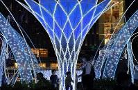 華やかなイルミネーションに照らされるJR博多駅前=福岡市博多区で2018年11月8日午後7時37分、徳野仁子撮影