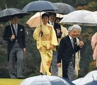 秋の園遊会に臨まれる天皇、皇后両陛下、皇太子ご夫妻、秋篠宮ご夫妻=東京・赤坂御苑で2018年11月9日午後2時18分、渡部直樹撮影