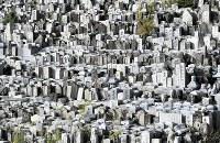 山の斜面にびっしりと並ぶ撤去された墓石。中には胸像も見られる=愛知県豊田市で、大西岳彦撮影