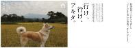 黄金色に染まった田んぼの前にたたずむ秋田犬を使った秋田県の観光ポスター=秋田県提供