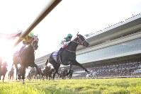 第43回エリザベス女王杯を制したリスグラシュー(右)=京都競馬場で2018年11月11日