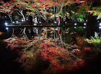 Illuminated autumn foliage is reflected in a pond at Sogi Park in the city of Toki, Gifu Prefecture, in central Japan, on Nov. 8, 2018. (Mainichi/Takehiko Onishi)