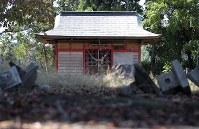 原発事故前まで毎年2月に三字の神楽が披露されていた稲荷神社。石灯籠(とうろう)は震災で崩れたまま放置され、神社前の広場には野生動物のフンがあちこちに落ちていた=福島県双葉町で2018年10月22日、喜屋武真之介撮影