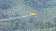 「甘いバナナの苦い現実」の一場面。小型飛行機が農薬を空中散布している=アジア太平洋資料センター提供