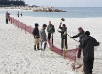 くいを打ち込んでネットを張る和歌山県白浜町の職員ら=同町の白良浜海水浴場で、藤田宰司撮影