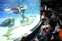 クリスマスを前に始まったサンタダイブ=東京都豊島区で2018年11月13日、宮武祐希撮影