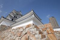 再建された尼崎城の天守=兵庫県尼崎市で2018年11月30日、梅田麻衣子撮影
