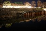 胆振東部地震で一部が倒壊した五稜郭の堀。この場所のライトアップは今年はできなかった=北海道函館市で2018年12月1日午後6時19分、貝塚太一撮影