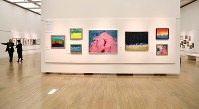 「ここから3」で展示されている中崎強さんの作品=東京都港区の国立新美術館で2018年12月5日、岡本同世撮影