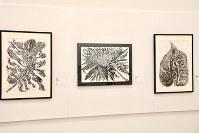 「ここから3」で展示されている大庭航介さんの作品=東京都港区の国立新美術館で2018年12月5日、岡本同世撮影