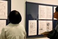 「ここから3」で展示されているいがらしみきおさんの「ぼのぼの」の原画=東京都港区の国立新美術館で2018年12月5日、岡本同世撮影