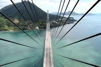 橋を支えるワイヤケーブルが放射状に見える多々羅大橋=愛媛県今治市で、渕脇直樹撮影