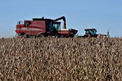 貿易戦争で中国への輸出が激減。農家には大打撃だ