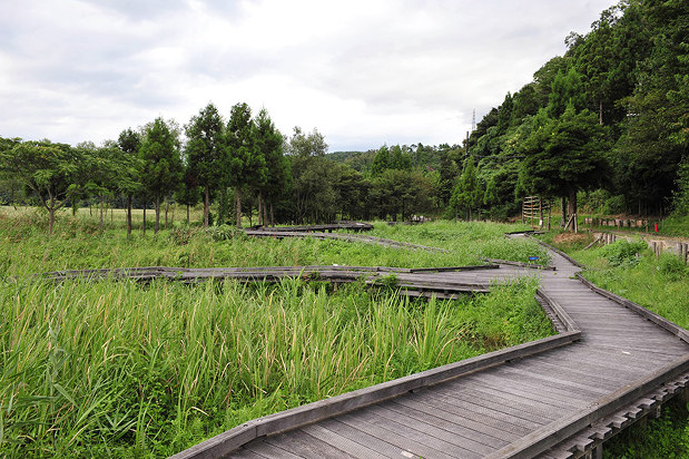 中池見湿地:活用の条例案示す ...