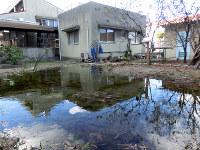 池に映る空