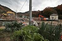 多くの住宅が被害を受けた天応地区で、自家用の野菜を栽培する森末節さん。周辺の家屋の撤去が始まっていた=広島県呉市で2018年12月7日、小出洋平撮影