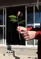 長年暮らした自宅が解体される日、避難先で活けるため、森末直美さんは敷地内でふくらみ始めたツバキを手にした=広島県呉市で2018年12月13日、小出洋平撮影