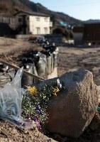 12人が犠牲になった天応地区には今も花が供えられている=広島県呉市で2019年1月3日、小出洋平撮影