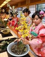 華道家元池坊の「初生け式」で花を生ける門弟たち=京都市中京区で2019年1月5日午前8時29分、川平愛撮影