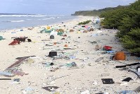 世界で最も隔絶された地にある英領ヘンダーソン島の砂浜は大小さまざまなプラスチックごみで覆われていた=2015年(ジェニファー・レイバースさん提供)