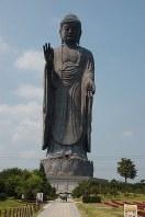 青銅製立像で世界一の高さ120メートルを誇る牛久大仏=牛久市久野町で2014年7月31日、福沢光一撮影