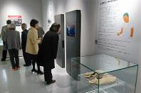 金栗が愛用したマラソン足袋(手前)などさまざまな展示が並ぶミュージアム=熊本県和水町で2019年1月11日午前11時15分、中里顕撮影